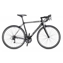 rower Aura 33 2019 + eBon