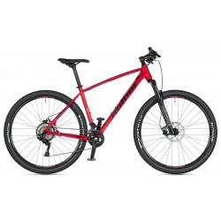 rower Radius 29 2020 + eBon